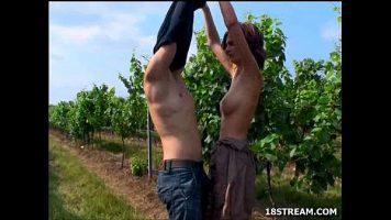 بدلاً من قطف العنب ، يخلع هذان الفلاحان ملابسهما ويمارسان الجنس معًا